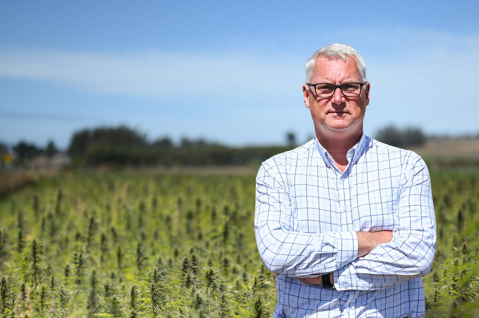 Photo for: Hemp Farmers Face $7.5bn in Losses as Banks Struggle to Come to Terms with CBD